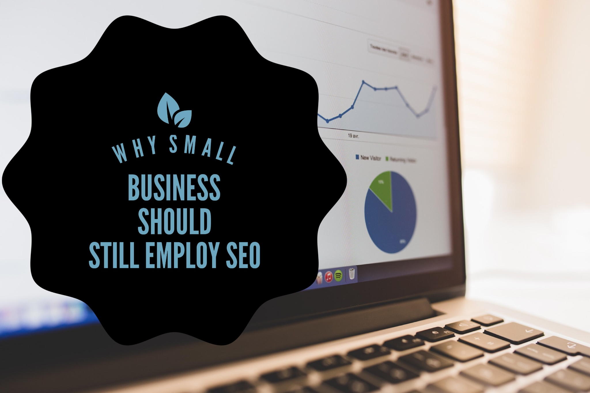 Case Studies Why Small Business Should Still Employ SEO Small Business SEO Case Studies Seo Case Studies Small Business